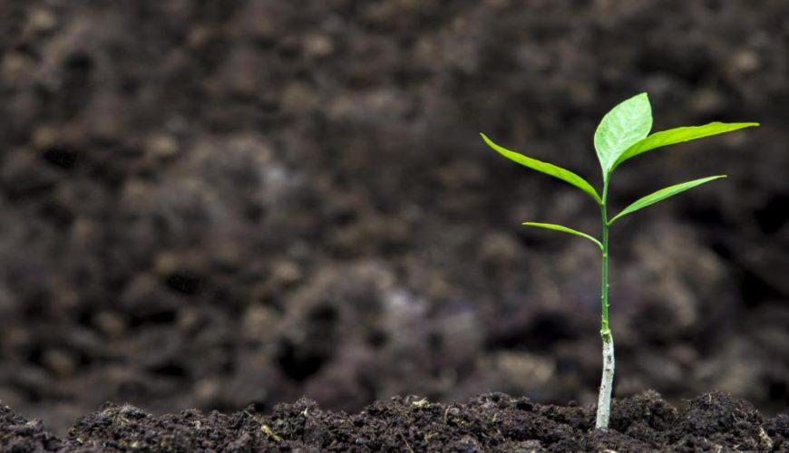 Soil Contamination / Compliance with Turkish Legislation